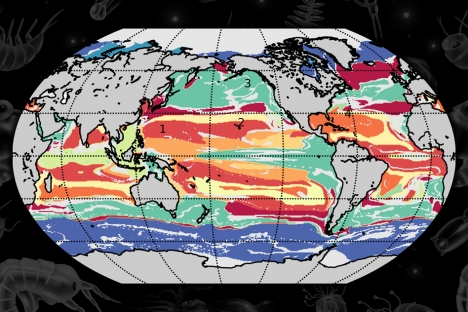 Machine learning helps map global ocean communities – MIT News