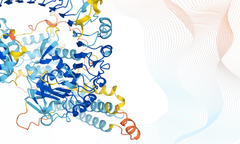 Artificial intelligence in structural biology is here to stay – Nature.com