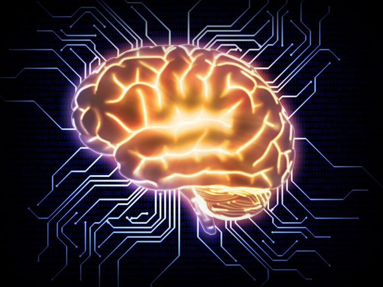 """Developing Artificial Intelligence That """"Thinks"""" Like Humans – SciTechDaily"""